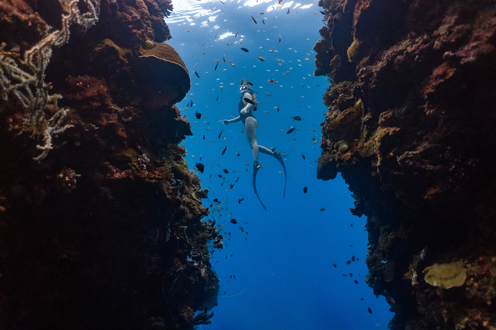 Freediving Bonaire