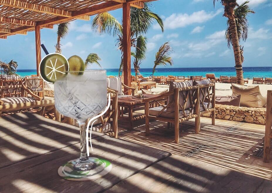 Ocean Oasis Bonaire
